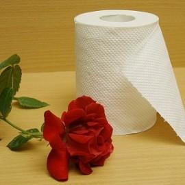 دستمال توالت دوقلو نیلوفر