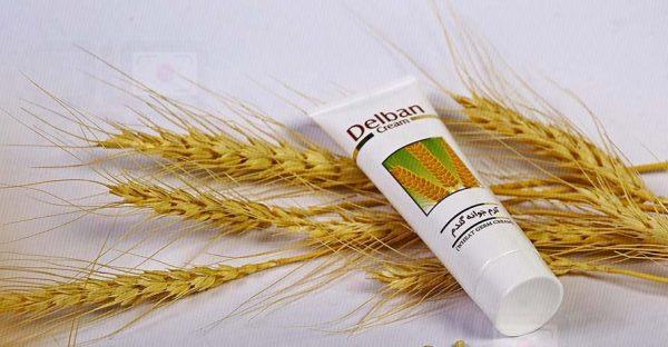 خرید کرم ضد پیری و جوان کننده جوانه گندم ۵۰ گرمی دلبان