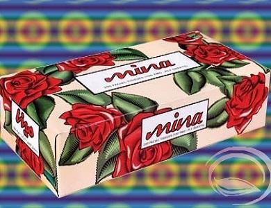 dastmal-mina200 خرید دستمال کاغذی ۲۰۰ برگ مینا