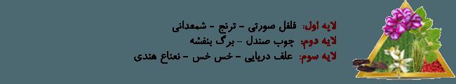 kharid-odkolon-mardane-paris-bloeu-aviator3-www-20to20-ir